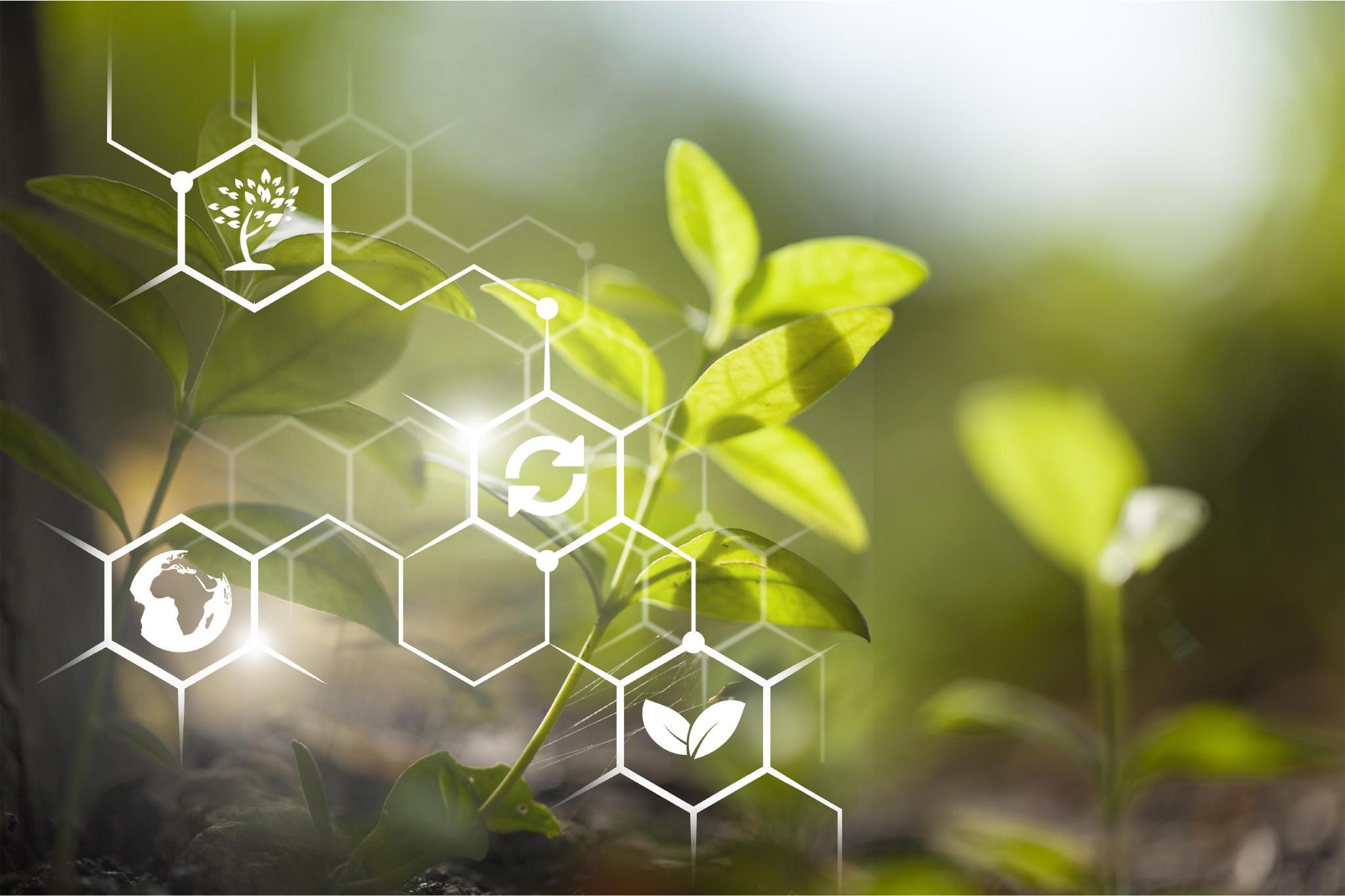 Imagem sobre Chamada que conecta startups a indústrias de agro é lançada oficialmente