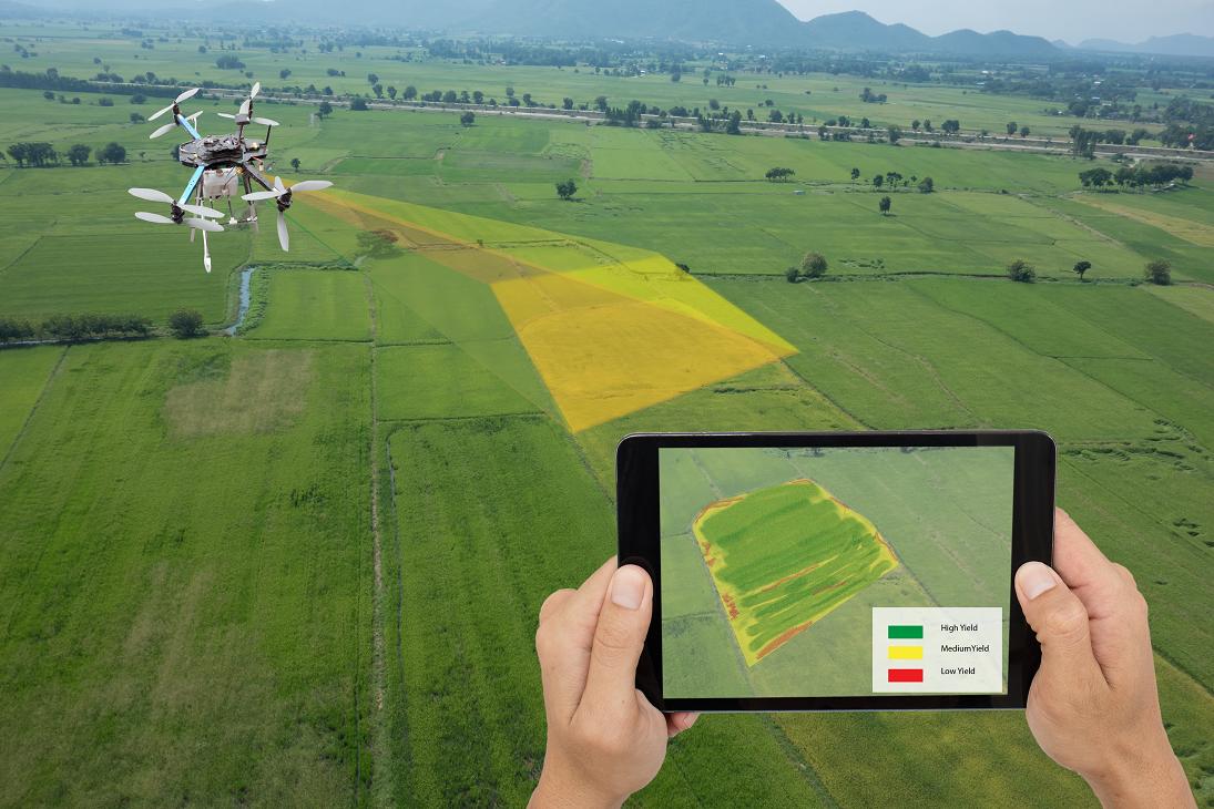 Imagem sobre Da agricultura 4.0 à Smart Farming